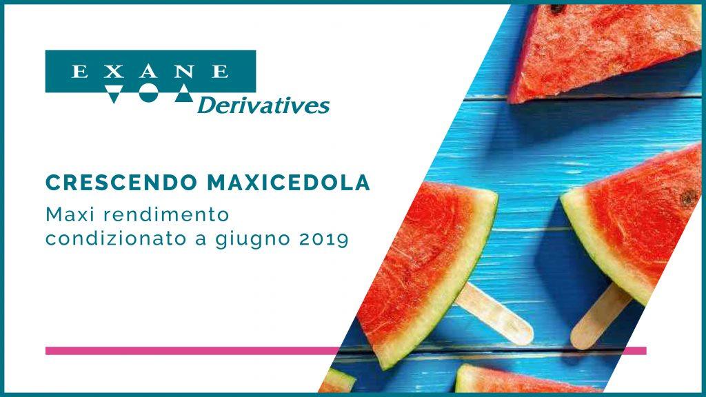 immagine-aziendale-maxicedola-2019