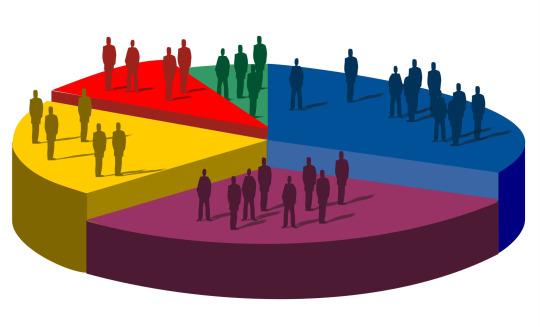 sondaggio elezioni 2013