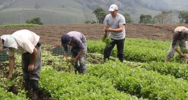 Venezuela, lavori forzati contro la fame: 120.000 già in fuga in Colombia