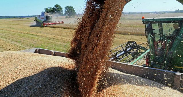 Il raccolto e le esportazioni di grano in Russia sono al top di sempre. E i prezzi mondiali ne risentono. A farne le spese sono USA e UE.