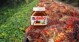 Nutella senza olio di palma, quanto costerebbe?