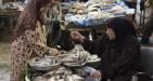 Pesce fresco e congelato, l'Egitto vieta le esportazioni e l'Italia deve importarlo