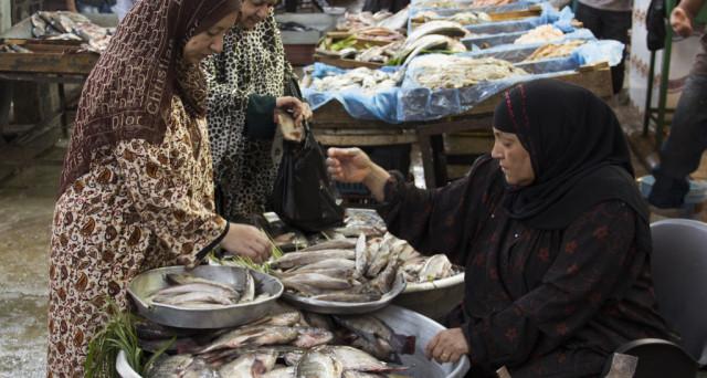 La crisi del pesce in Egitto spinge il governo a imporre dazi sulle esportazioni, mentre l'Italia e il resto d'Europa non ne hanno a sufficienza per i loro consumi interni.