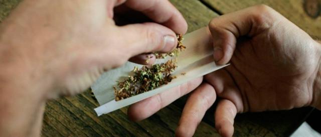 In Italia la marijuana light legalizzata: cosa accadrebbe se la legalizzazione avvenisse per tutte le droghe leggere? Analisi economica, sociale e morale.