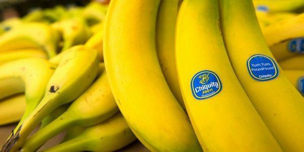 Non sbucciate quella banana! L'inchiesta shock sul frutto più consumato al mondo