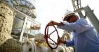 L'accordo OPEC non scalda le quotazioni del petrolio, che arretrano