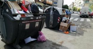 Allarme topi e scarafaggi a Roma a causa dell'emergenza rifiuti. Renzi