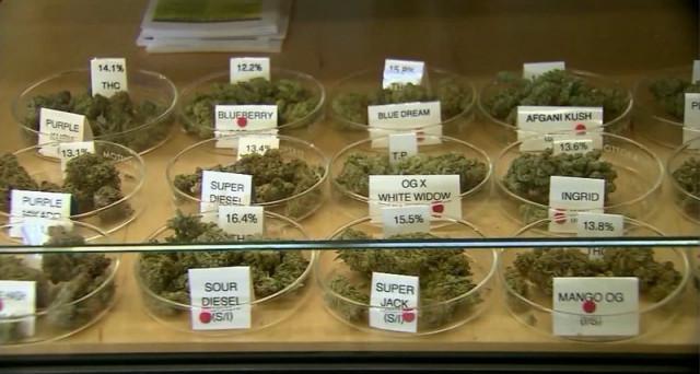 Una professione in grande crescita (negli USA, ovviamente) è il sommelier della marijuana legalizzata. Una professione di responsabilità.