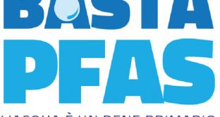 PFAS, il veleno nel sangue degli adolescenti (veneti e non solo): la denuncia di Greenpeace e la vergogna italiana