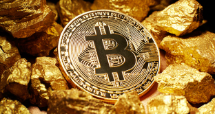 Bitcoin e oro su Google, le differenze