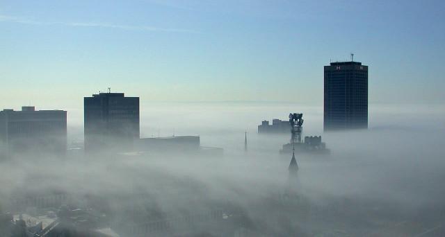 Secondo l'Organizzazione Mondiale per la Sanità, il costo economico in riferimento all'inquinamento atmosferico è pari a 97 miliardi di dollari.