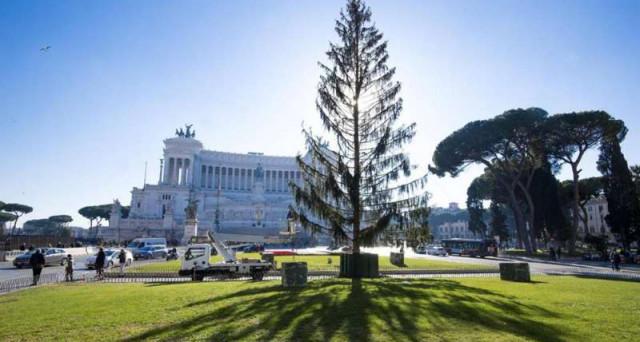 L'operazione Spelacchio rappresenta un boomerang per l'immagine della più importante sindaca grillina d'Italia. L'albero di Natale a Roma è il simbolo di una finta austerità e di una vera tristezza.