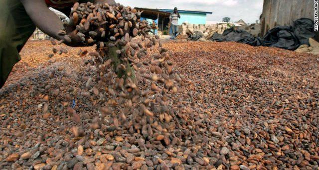 La crisi del sistema bancario in Costa d'Avorio rischia di rendere più caro e meno abbondante il cacao sulle nostre tavole da qui a Natale.