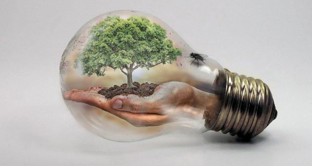 I cambiamenti climatici avranno conseguenze pesantissime sull'umanità: da qui la necessità di un'economia carbon-free.