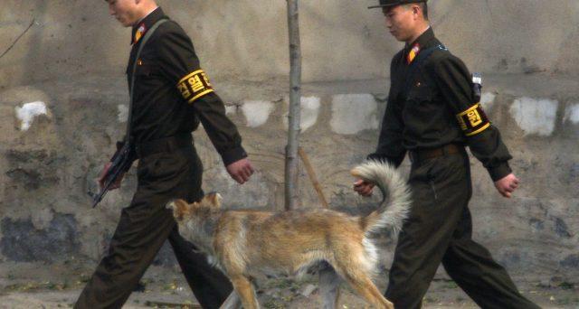 Caccia ai cani a Pyongyang, dove la fame dilaga tra emergenza Covid, alluvioni e isolamento internazionale. E il leader riunisce i vertici del partito per fare il punto.