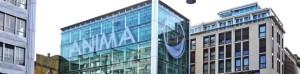 IPO Anima