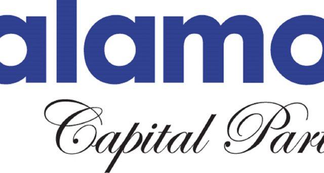 palamon capital partners logo