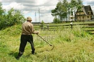 società agricole