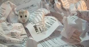 E' scaduto il 29 febbraio il termine per l'invio della comunicazione sulle anomali degli studi di settore 2010