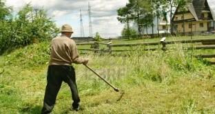 Società agricole senza più possibilità di scelta del regime di tassazione fondiaria dal 1 gennaio 2013. Dura la critica di Confagricoltura