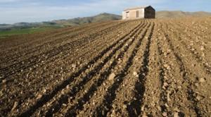 Le risposte al calcolo della mini IMU sui terreni agricoli nelle FAQ pubblicate sul sito del Ministero dell'economia e delle finanze