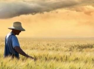 L'esenzione IMU agricola è applicabile se oggetto che concede il terreno in affitto o in comodato a un coltivatore diretto o a un imprenditore agricolo professionale, iscritto nella previdenza agricola, abbia egli stesso la qualifica di CD o di IAP e l'aliquota base dello 0,76% è sempre applicabile.