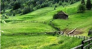 Imu terreni agricoli in comuni montani o collinari, anche non coltivati? C'è l'esenzione. L'indiscrezione nelle bozze delle istruzioni al modello per la dichiarazione Imu