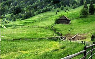 Il Consiglio dei Ministri ha stabilito la sospensione del pagamento Imu di giugno anche per i possessori di terreni agricoli