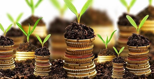 Arriva il bonus per le piccole e medie imprese che investono: ecco come dovrebbe essere strutturato.