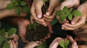 Stanno per debuttare le imprese di agricoltura sociale: ecco quali sono i requisiti, come aprirne una e con quali vantaggi