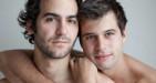 Il termine omosessuale non èoffensivo