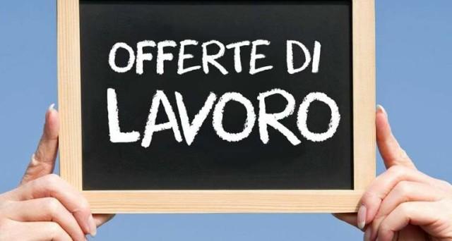 Nuove offerte di lavoro Amazon a Verona, centinaia di posti di lavoro grazie a nuovo polo.