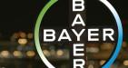 Bayer offerte di lavoro e posizioni aperte: requisiti e come candidarsi