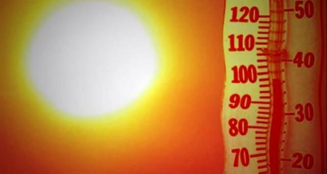 Che siamo di fronte a temperature da caldo record è indubbio. Ma attenzione alle bufale: pop corn che cuociono in strada e rossi a rischio estinzione?