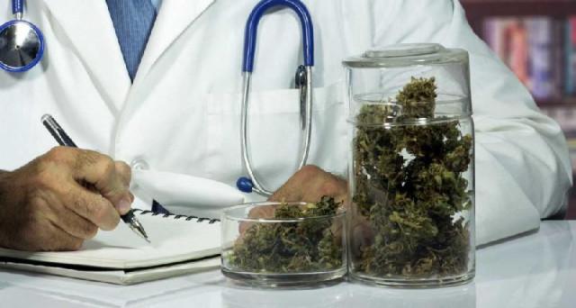 Cannabis terapeutica, legge con l'Ok della Camera passa al Senato ma è stata bollata come