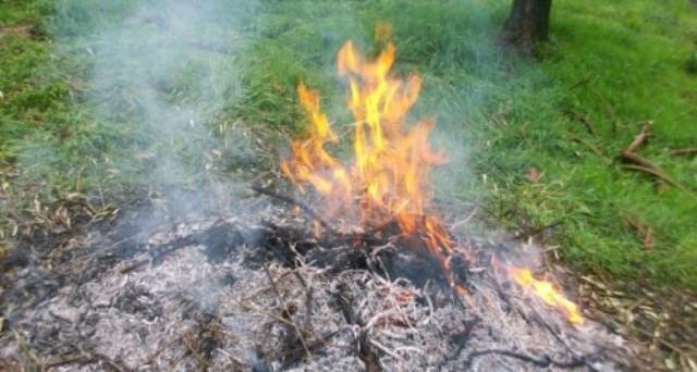 Bruciare erbacce e sterpaglie: si può fare? In realtà non solo si rischia la multa ma anche la denuncia penale. Ecco quando.
