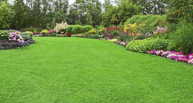 Arriva il bonus terrazzi e giardini nella legge di for Mobili per terrazzi e giardini