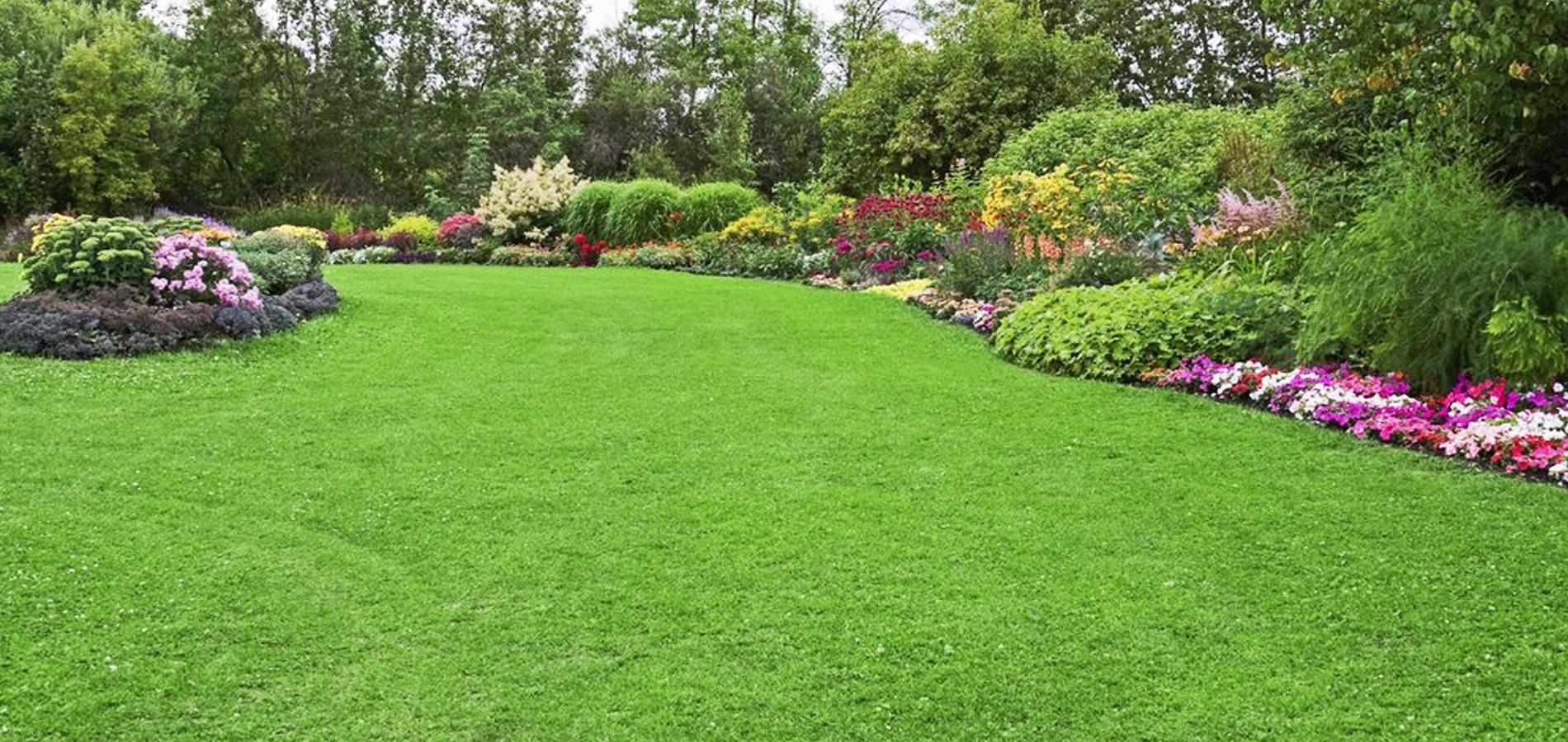 Arriva il bonus terrazzi e giardini nella legge di for Laghetti nei giardini