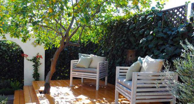 Bonus verde ultimi aggiornamenti sulle piante ammesse - Alberi da piantare in giardino ...