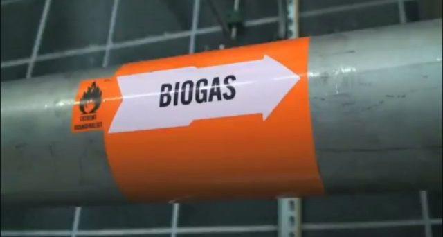 Incentivi biogas 2018: quelli confermati, procedura domanda e scadenza. Ecco i riferimenti normativi.