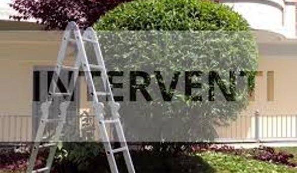 Lavori giardinaggio: da che cosa dipende l'aliquota IVA applicata? Può essere diversa chiedendo più preventivi a ditte differenti? 22 o 10%.