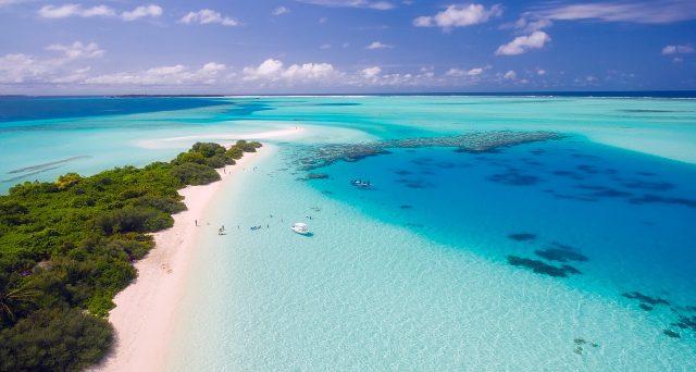 Libraio alle Maldive per resort di lusso, l'offerta di lavoro arriva da un rampollo inglese ma quali sono  i requisiti?