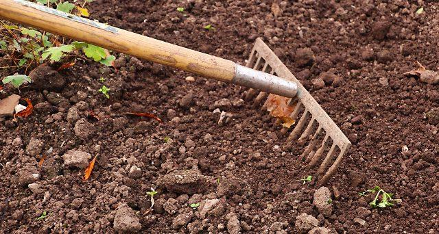 Chi lo scorso anno è stato possessore di terreno agricolo esente IMU dovrà barrare l'apposita casella al quadro A oppure RA rispettivamente del Modello 730/2020 o Modello Redditi/2020 a seconda dei casi