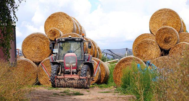 Ancora pochi giorni per la presentazione della domanda di partecipazione da parte delle piccole e medie imprese agricole per il Bando ISI agricoltura 2019-2020 dell'INAIL