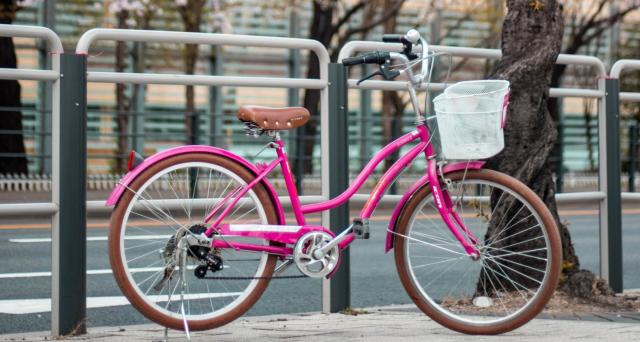 È possibile acquistare beni e servizi via internet, usufruendo del Bonus Bicicletta, anche da aziende straniere, purché il relativo esercente sia accreditato sull'applicazione web.