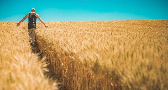 Il Decreto Sostegni bis istituirà anche un nuovo bonus a favore dei lavoratori agricoli. Sospesa la mobilitazione nazionale del 30 aprile.