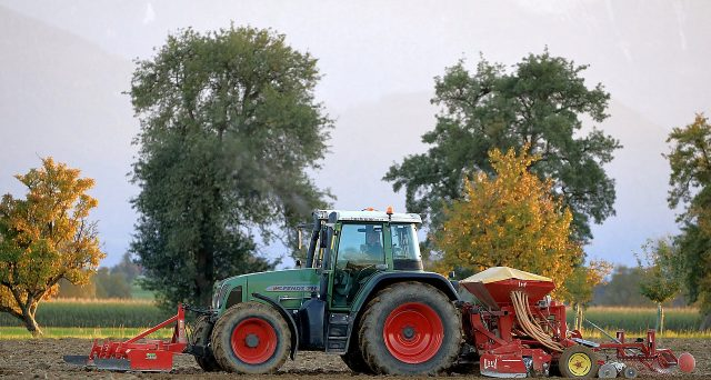 Nel 2021 non c'è imposta di registro fissa per i terreni agricoli di valore non superiore a 5.000 euro venduti a coltivatori diretto o IAP