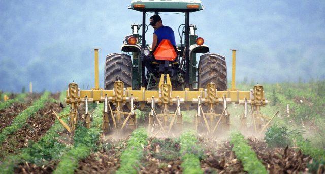 Esenti dall'informativa antimafia, fino al 31 dicembre 2021, i produttori agricoli che facciano richiesta di accesso a fondi europei