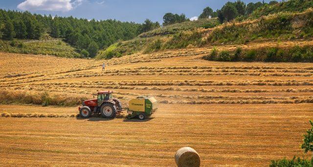 Settore agroalimentare: 2 miliardi di euro dal Sostegni-bis