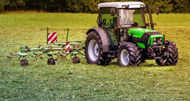 Imprenditoria giovanile agricoltura 2021: al via il bando ISMEA
